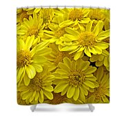 Sunshine Yellow Chrysanthemums Shower Curtain