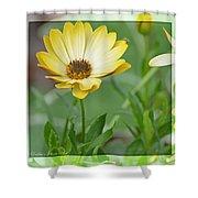 Sunshiny Day Shower Curtain