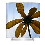 Sunstar Shower Curtain