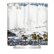 Surf Ducks Shower Curtain