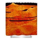 Surface Of Venus Shower Curtain