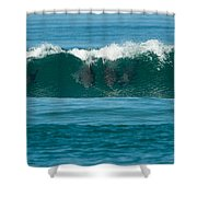 Surfing Dolphins 2 Shower Curtain