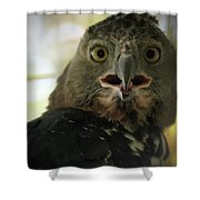 Surprized Shower Curtain