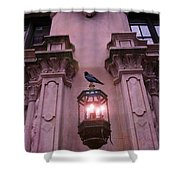 Surreal Raven Gothic Lantern On Building Shower Curtain