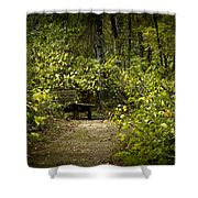 Surrounded By American Beauty Shower Curtain by Kim Henderson
