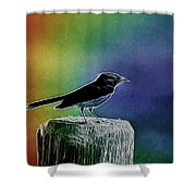 Surrounded By Color Shower Curtain