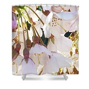 Surrounded By Spring Shower Curtain