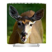Survival Of Innocence Shower Curtain