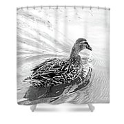 Susie Duck Shower Curtain