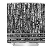 Susys Ranch  Shower Curtain