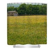 Swaledale Buttercup Meadow Shower Curtain