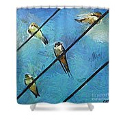 Swallows Goes To South Shower Curtain