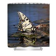 Swallowtail - Walking On Water Shower Curtain