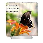 Swallowtail Card Shower Curtain