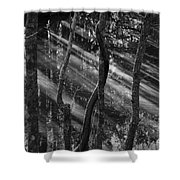 Swamp At Sunset Shower Curtain
