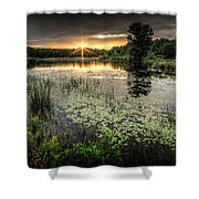 Swamp Sunrise Shower Curtain