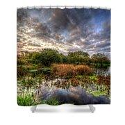 Swampy Shower Curtain