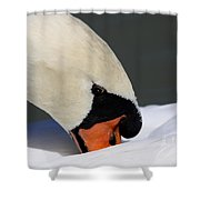 Swan - Soft And Fluffy Shower Curtain