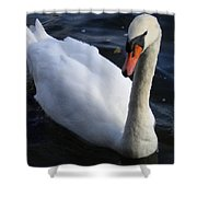 Swan Flying In The Water  Denmark Shower Curtain