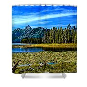 Swan Lake II Shower Curtain