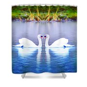 Swan Love Shower Curtain by Bill Cannon