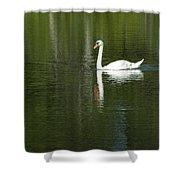 Swan On Wintergreen Lake Shower Curtain