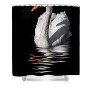 Swan Riflected In The Dark Shower Curtain