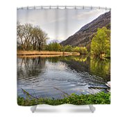 Swan Swimming On A Lake Shower Curtain