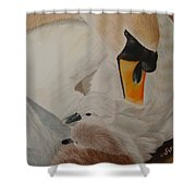 Swan With Cygnets Shower Curtain