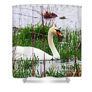 Swan's Marsh Shower Curtain