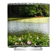 Swans On Pond And Hibiscus With Oil Painting Effect Shower Curtain