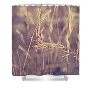 Swaying In The Soft Summer Breeze Shower Curtain