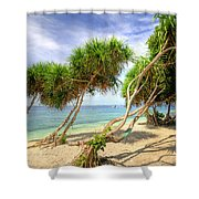 Swaying Palm Trees Shower Curtain