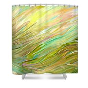 Sweeping Shower Curtain