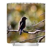 Sweet And Peaceful Shower Curtain