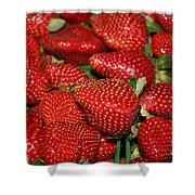 Sweet Florida Strawberries Shower Curtain