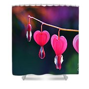 Sweet Hearts Shower Curtain