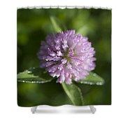 Sweet Pink Clover Shower Curtain