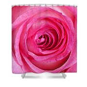 Sweet Pink Rose IIi Shower Curtain