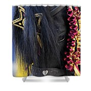 sweetheart - a Menorca race horse with traditional multicolor ribbons and mirror star Shower Curtain