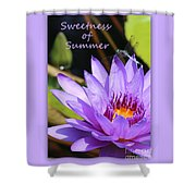Sweetness Of Summer Shower Curtain