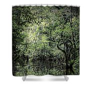 Sweetwater Strand Shower Curtain