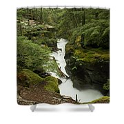 Swift Currents Shower Curtain