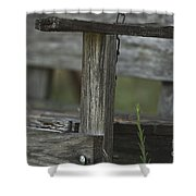 Swing In The Woods Shower Curtain
