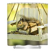 Swingin Squirrel Robber Shower Curtain