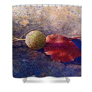 Sycamore Ball And Leaf Shower Curtain