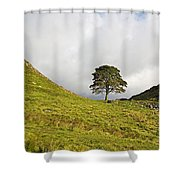 Sycamore Gap II Shower Curtain