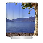 sycamore tree at the Lake Maggiore Shower Curtain