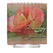 Sympathy Greeting Card - Peach Rose Shower Curtain