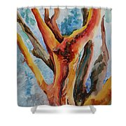 Symphony Of Branches Shower Curtain